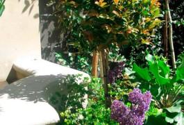 City-Gardens-23